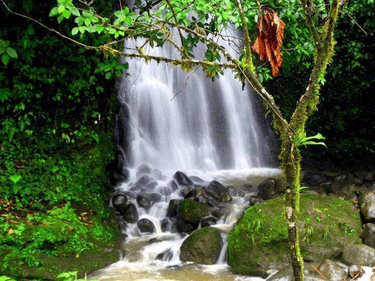 Costa Rica Waterfalls Dominical Uvita
