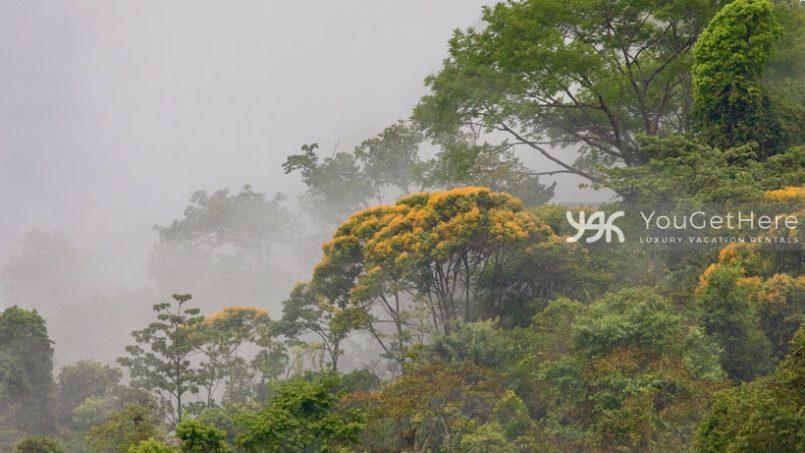 House-rentals-Costa Rica-Dominical-Uvita-Casa-koora-