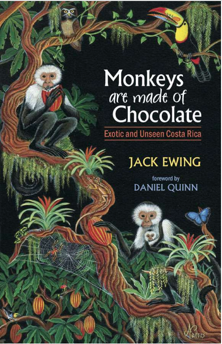 monkeys-are-made-of-chocolate-children-books-for-costa-rica